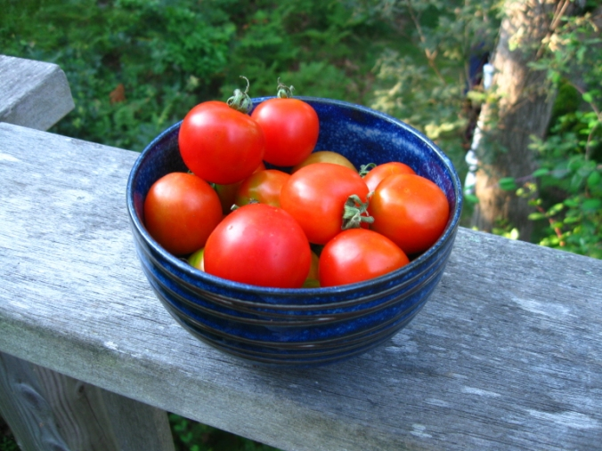 My writing may be a garden, but I'd rather eat tomatoes than words.