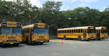Four buses in waiting at the West Tisbury School