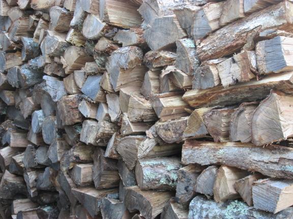 20141121 woodpile 1