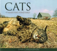 vineyard cats sm
