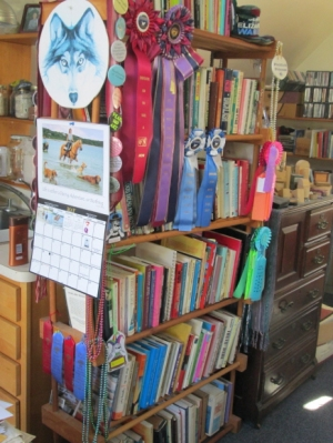 One of my two big bookshelves, freshly culled, dusted, and reorganized, and garnished with a few of my dog's Rally Obedience title ribbons.