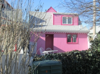 Pink House, rear view, with mystery plant